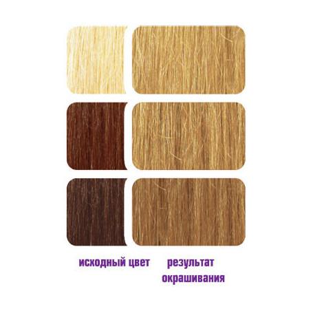 Краска для волос фиона дикая вишня